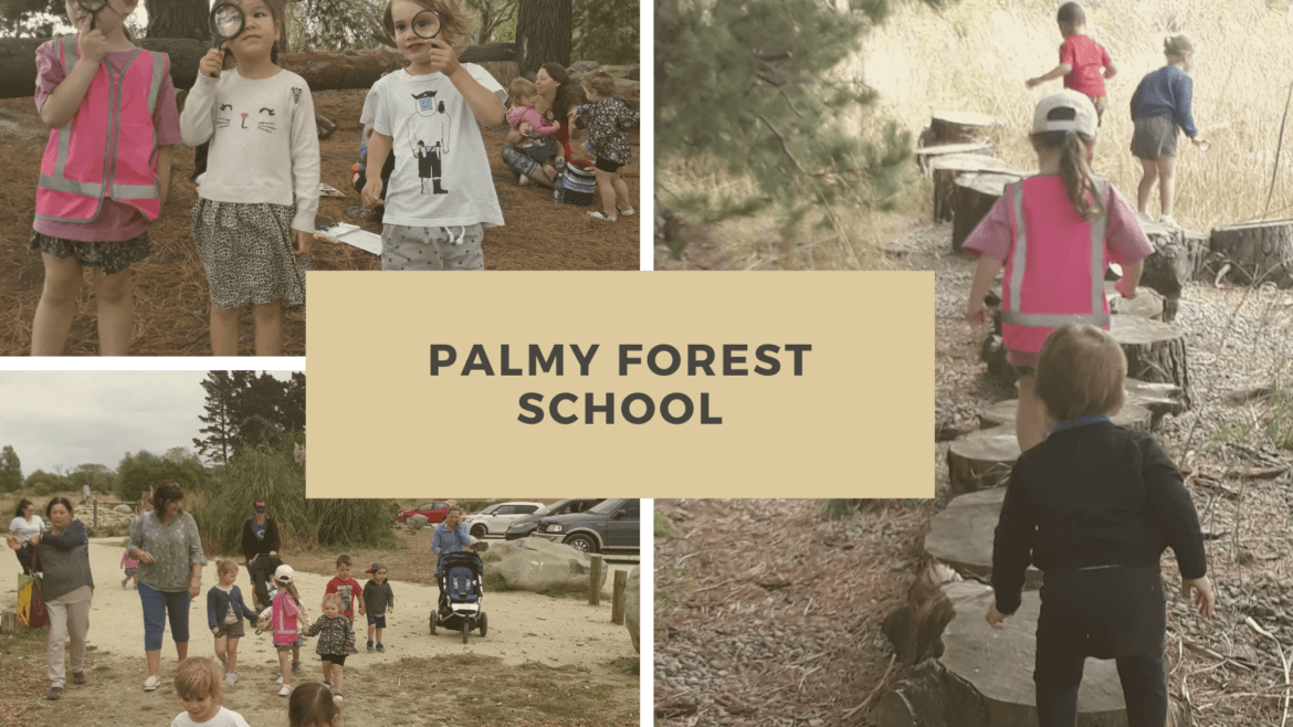 Palmerston North Forest School